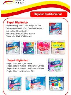 Higiene institucional K&A-page-005